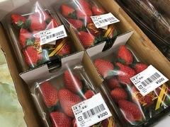 【およりてふぁーむから】 苺・キウイ入荷しています♪