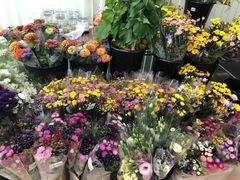 およりてふぁーむです。お盆切り花フェアを開催します