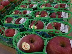 りんごの里です!!りんご祭り開催します!!