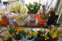 【直売所】春のお彼岸フェアを開催します