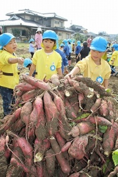 日本の農業と食育