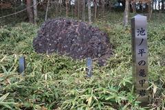 亀甲岩 ~火山の存在を示す玄武岩の溶岩~(根羽村)