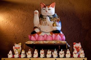 薬師猫神様
