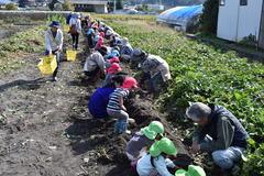 地域に根差した農園づくり/「あすなろ農園」の収穫体験