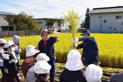 農商工の若手が連携し、園児と小学生の稲刈り体験