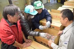 出来を確認しながらの市田柿の格付け作業