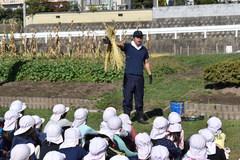 JA上郷支所 丸山小学校5年生に稲作指導