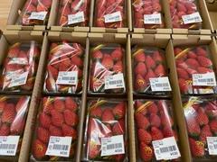 【直売所】りんごの里・およりてふぁーむ 「いちご祭り」を開催します