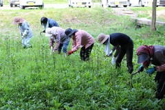 【NEWS】地域活性化に貢献 くりん草園の整備作業ボランティア
