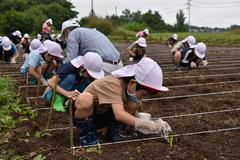 【NEWS】大豆の種植え 座光寺小2年生