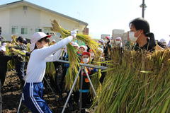 【NEWS】丸山小学校 あいがも農法を取り入れた米作り