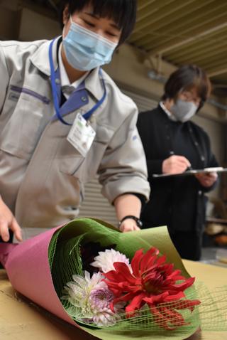 ダリアの花束を作るJA職員