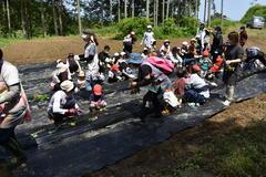 【NEWS】安全安心な食を伝える 泰阜保育園で食育活動