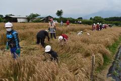 【NEWS】女性部グループ「Spica(スピカ)」 小麦で農食一貫の食育活動