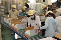 【NEWS】新たな消費者ニーズに農福連携取り組み強化