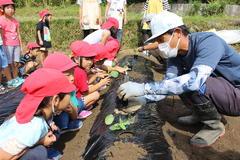 【NEWS】青年部と園児が一緒に野菜作り