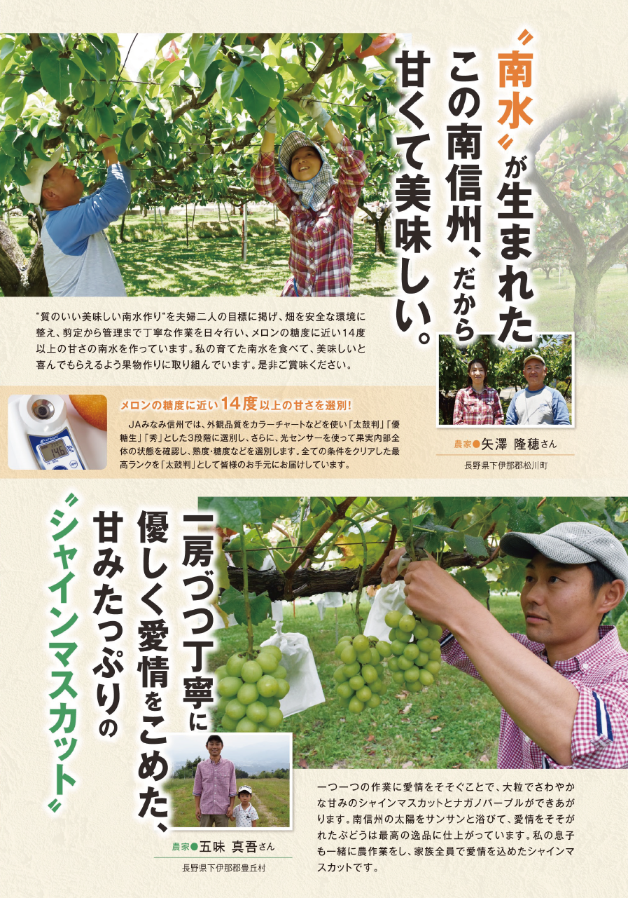 http://www.ja-mis.iijan.or.jp/news/images/%EF%BC%A4%EF%BC%AD%E4%BE%BF%E3%82%8A1.png